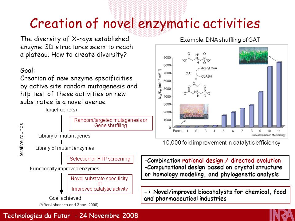 Technologies du Futur - 24 Novembre 2008 Creation of novel enzymatic activities -Combination rational design / directed evolution -Computational desig