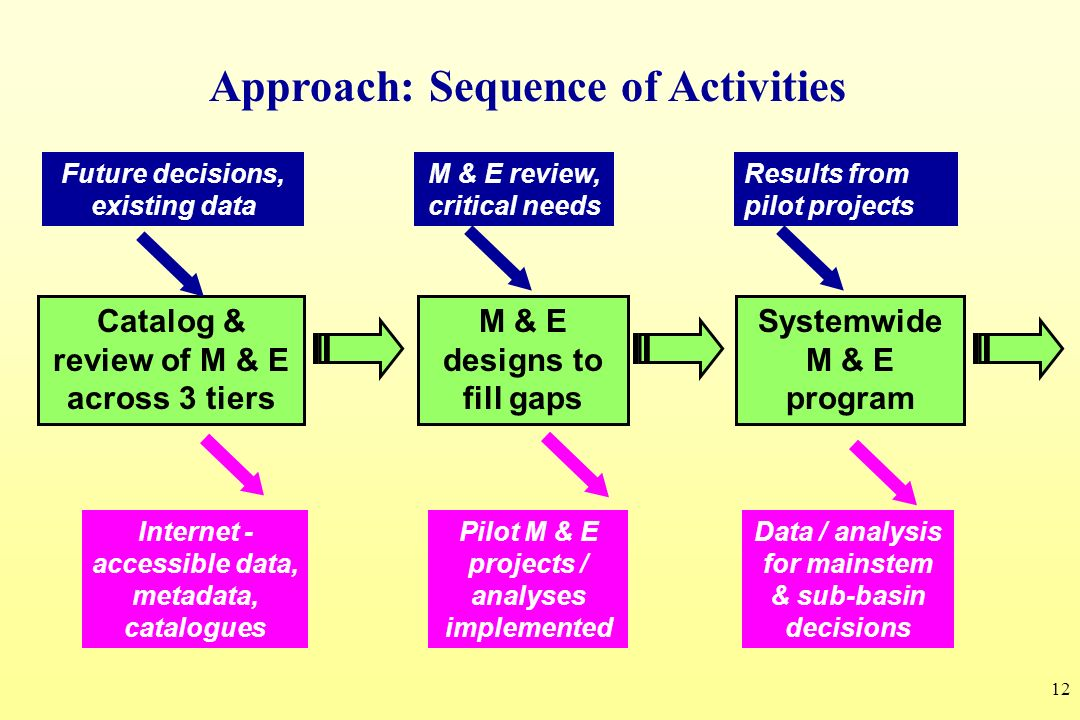 12 Catalog & review of M & E across 3 tiers Systemwide M & E program Future decisions, existing data M & E review, critical needs Results from pilot p