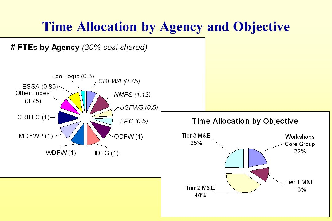 18 Time Allocation by Agency and Objective