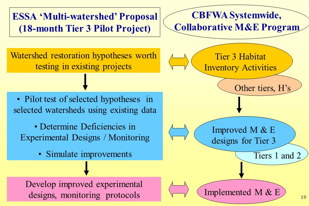 19 ESSA Multi-watershed Proposal (18-month Tier 3 Pilot Project) Watershed restoration hypotheses worth testing in existing projects Pilot test of sel