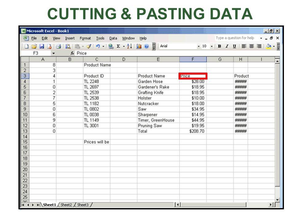 CUTTING & PASTING DATA