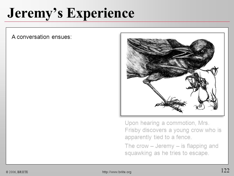 122 © 2006, BRIITE http://www.briite.org Jeremys Experience Upon hearing a commotion, Mrs. Frisby discovers a young crow who is apparently tied to a f