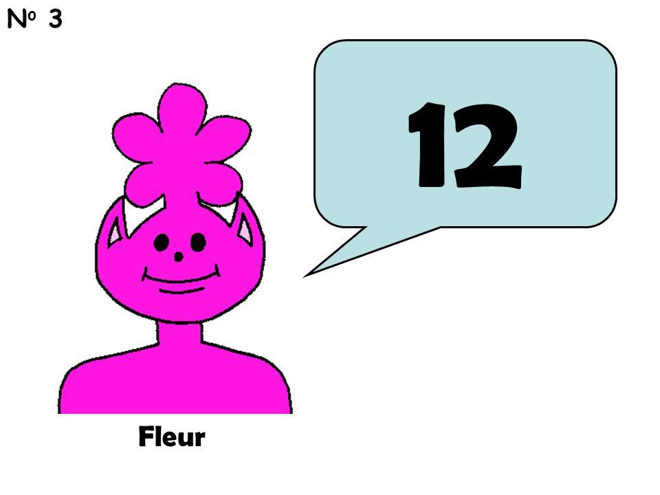 12 N o 3 Fleur