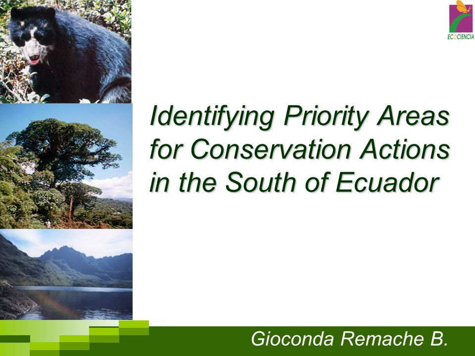 Identifying Priority Areas for Conservation Actions in the South of Ecuador Gioconda Remache B.