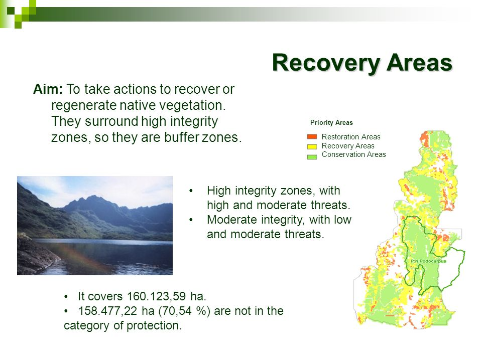 Priority Areas Restoration Areas Recovery Areas Conservation Areas Aim: To take actions to recover or regenerate native vegetation. They surround high