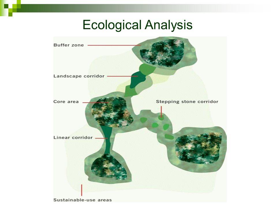 Ecological Analysis