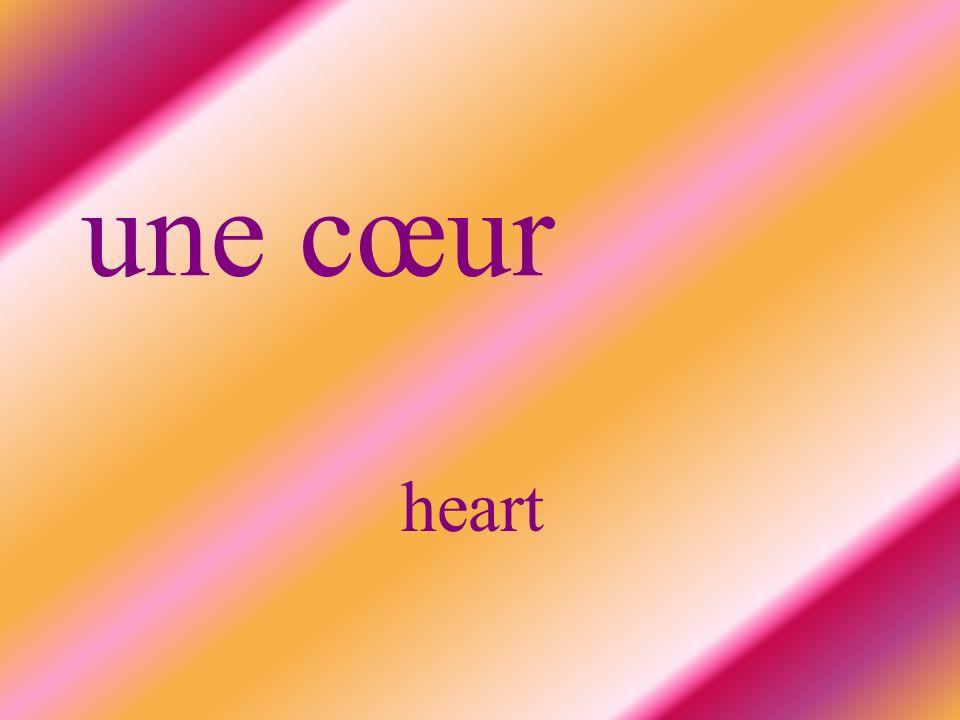 une cœur heart