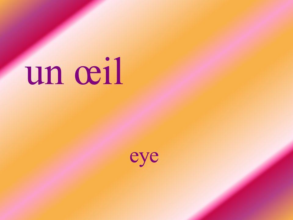 un œil eye