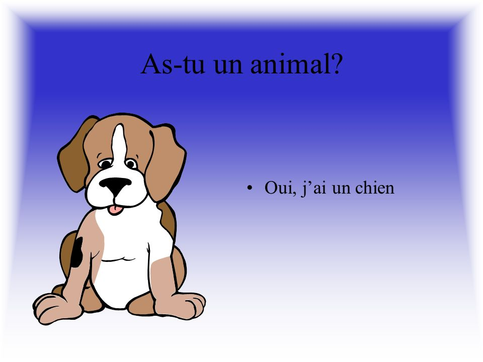As-tu un animal Oui, jai un chat