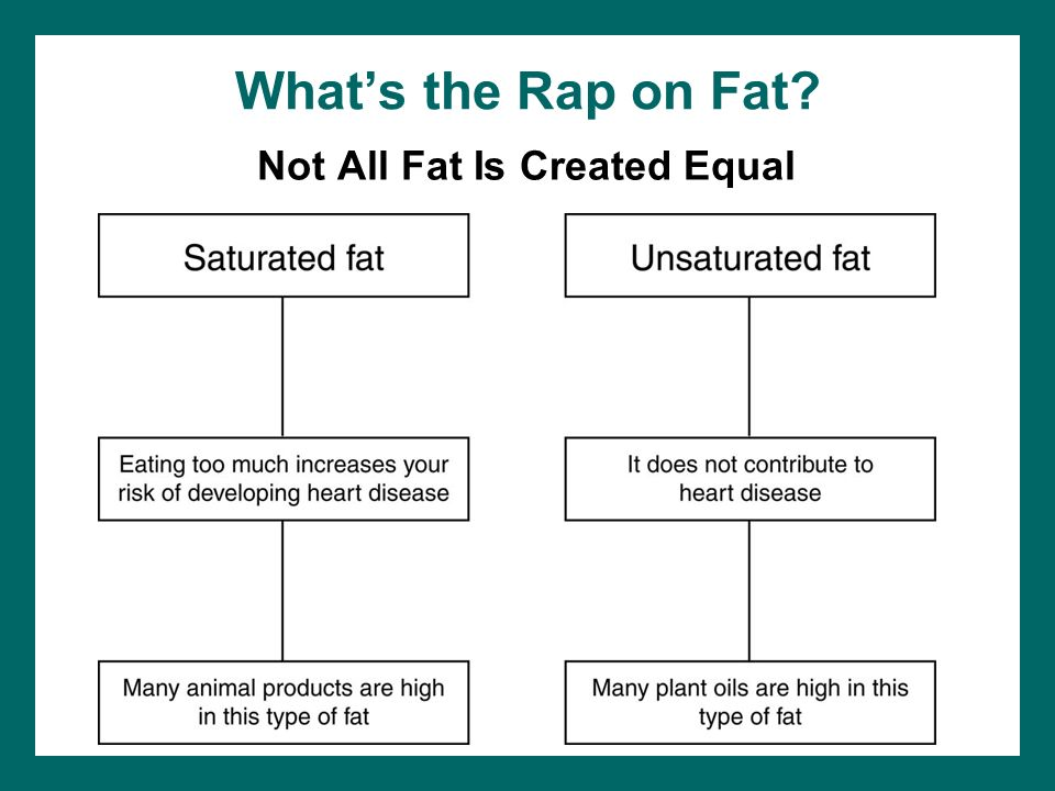 Whats the Rap on Fat? Not All Fat Is Created Equal
