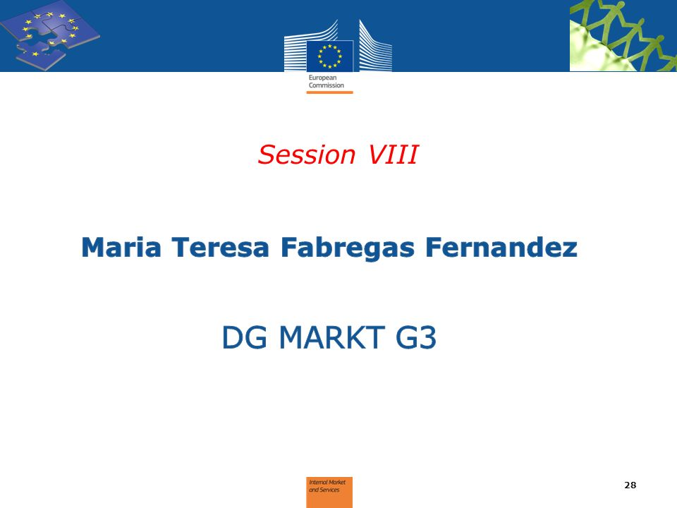 Session VIII 28