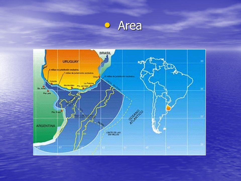 Area Area