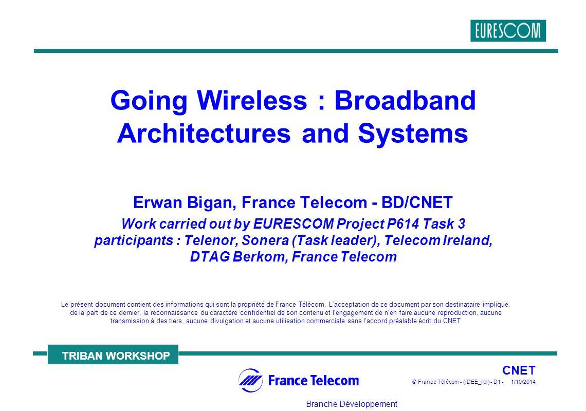 Branche Développement Le présent document contient des informations qui sont la propriété de France Télécom.