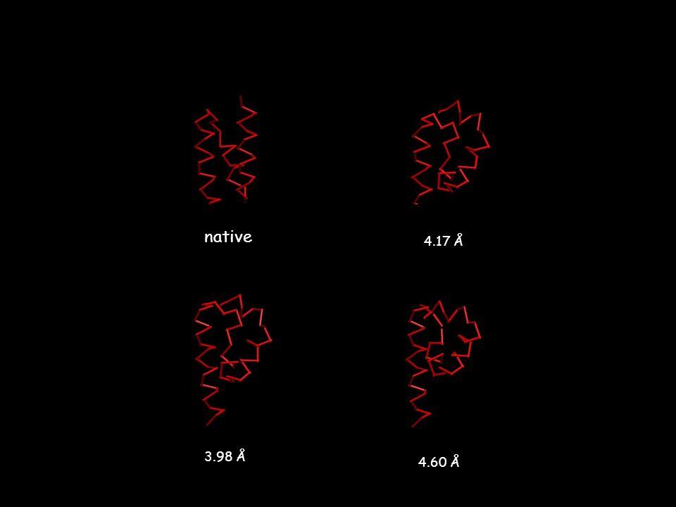 native 4.17 Å 3.98 Å 4.60 Å