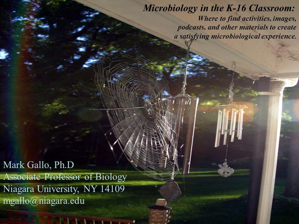 Mark Gallo, Ph.D Associate Professor of Biology Niagara University, NY 14109 mgallo@niagara.edu Microbiology in the K-16 Classroom: Where to find acti