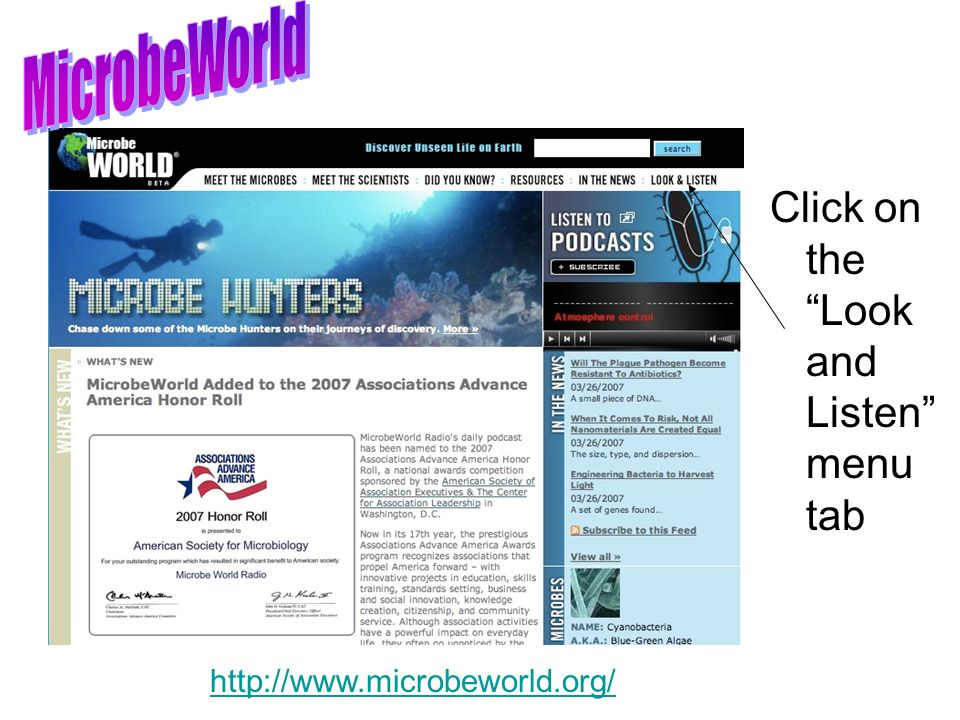 Click on the Look and Listen menu tab http://www.microbeworld.org/