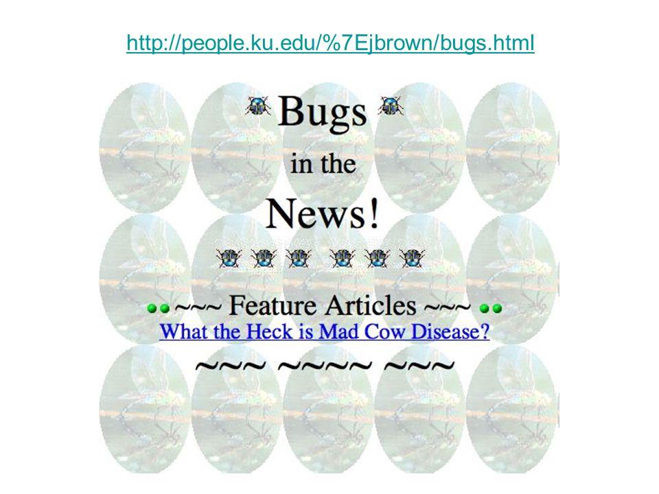 http://people.ku.edu/%7Ejbrown/bugs.html