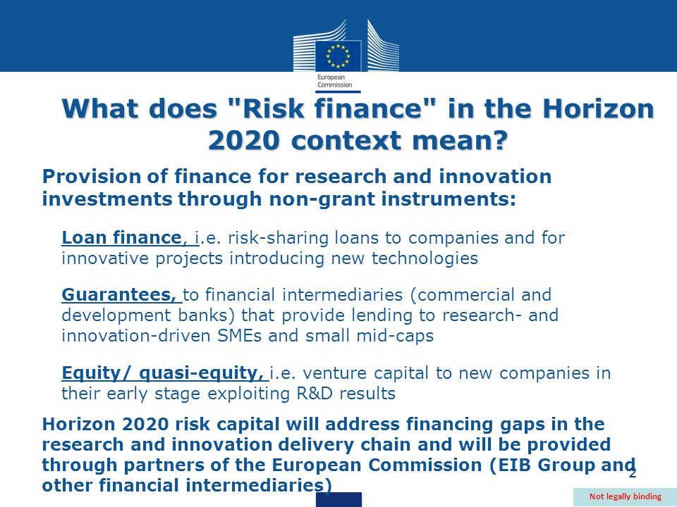 2 What does Risk finance in the Horizon 2020 context mean.