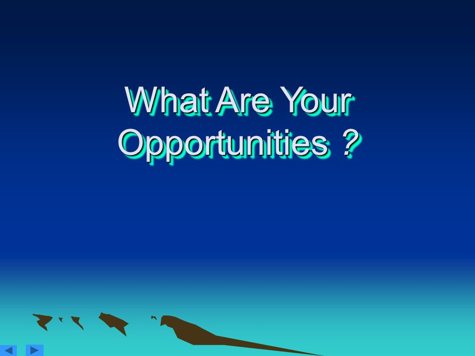 What Are Your Opportunities ?