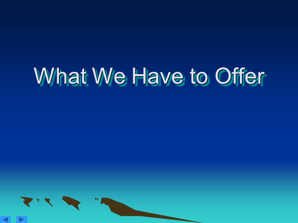 What We Have to Offer