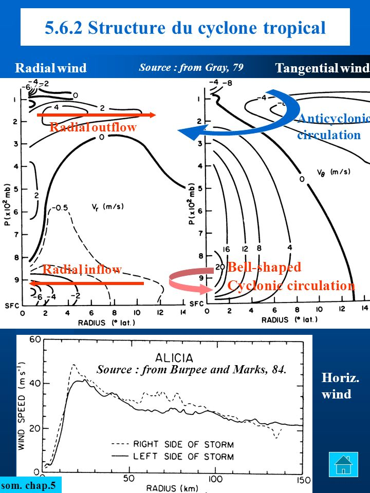 Radial windTangential wind Horiz. wind Bell-shaped Cyclonic circulation Anticyclonic circulation Radial inflow Radial outflow som. chap.5 5.6.2 Struct