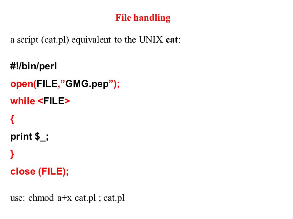 File handling #!/bin/perl open(FILE,GMG.pep); while { print $_; } close (FILE); a script (cat.pl) equivalent to the UNIX cat: use: chmod a+x cat.pl ; cat.pl