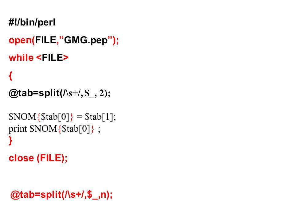#!/bin/perl open(FILE,GMG.pep); while { @tab=split(/ \s+/, $_, 2); $NOM{$tab[0]} = $tab[1]; print $NOM{$tab[0]} ; } close (FILE); @tab=split(/\s+/,$_,n);