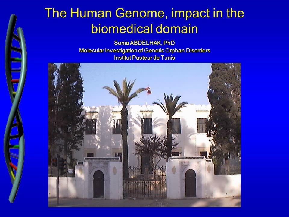 The Human Genome, impact in the biomedical domain Sonia ABDELHAK, PhD Molecular Investigation of Genetic Orphan Disorders Institut Pasteur de Tunis