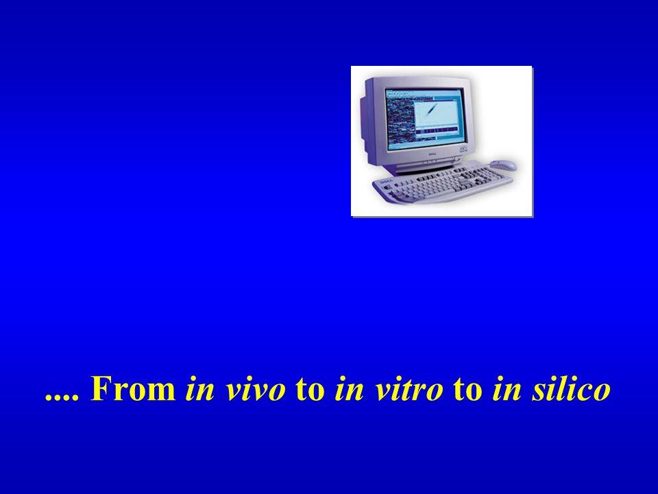 .... From in vivo to in vitro to in silico