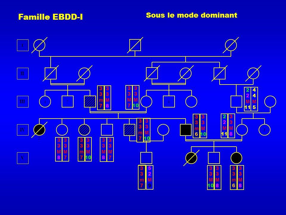 Famille EBDD-I IV V III I II 2 7 4 4 3 33m733m7 3 M 10 33m733m7 3 M 10 33m633m6 3 M 10 33m633m6 33M833M8 33m733m7 33M833M8 Sous le mode dominant 33M733M7 33M833M8 33M833M8 33M733M7 2 M 11 33M833M8 3 M 10 33M833M8 33M733M7 3 M 10 2 M 11 44M544M5 52M952M9 33M33M 33m733m7