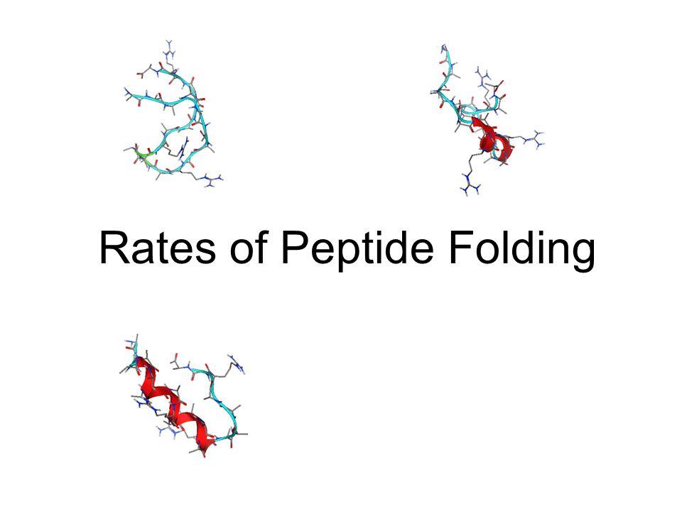 Rates of Peptide Folding