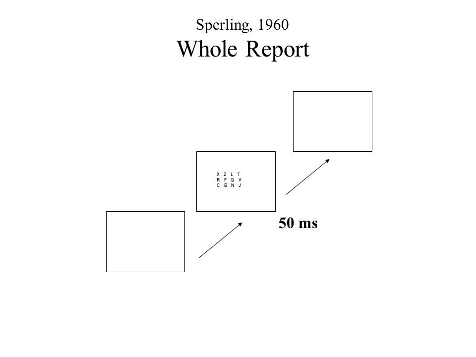 X Z L T R F Q V C B N J 50 ms Sperling, 1960 Whole Report