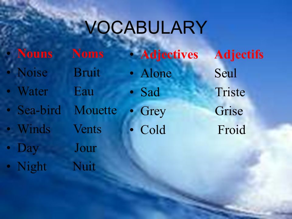 Adjectives Adjectifs Alone Seul Sad Triste Grey Grise Cold Froid VOCABULARY Nouns Noms Noise Bruit Water Eau Sea-bird Mouette Winds Vents Day Jour Night Nuit