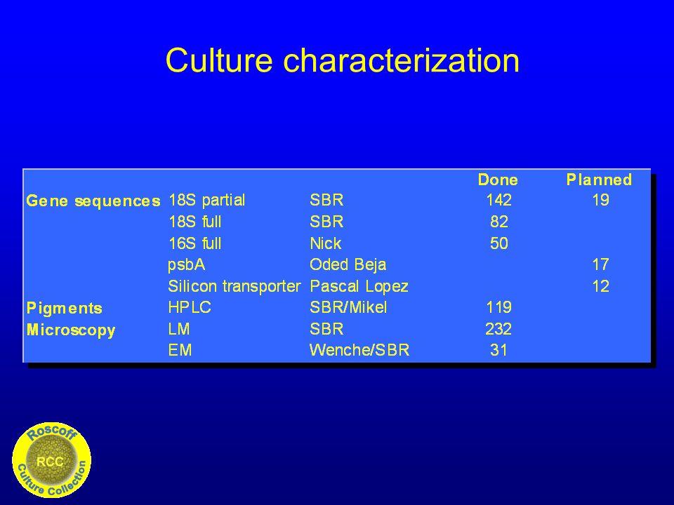 Culture characterization