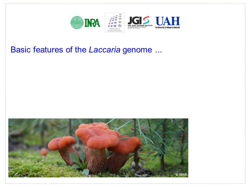Goals.Comparative genomics of ascomycetous and basidiomycetous ectomycorrhizal fungi.