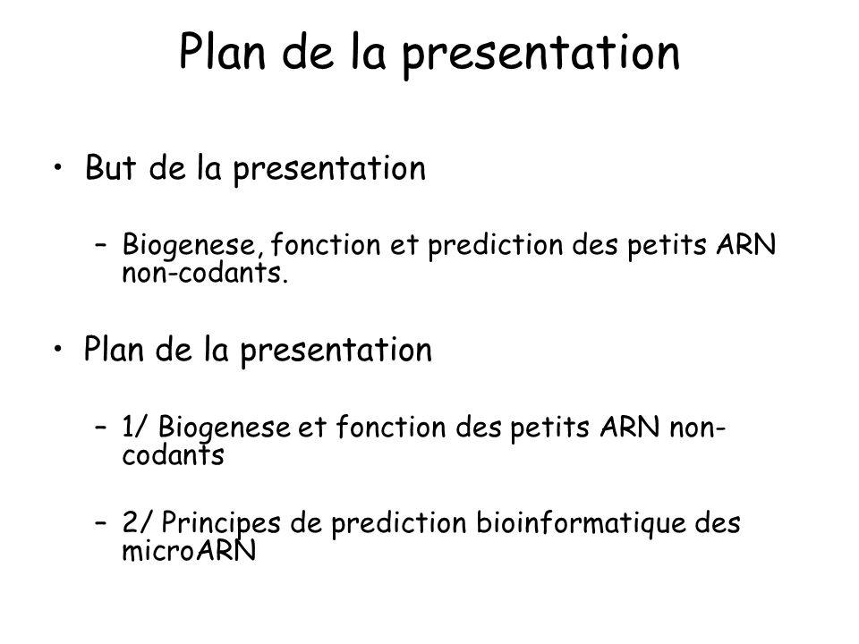 Plan de la presentation But de la presentation –Biogenese, fonction et prediction des petits ARN non-codants. Plan de la presentation –1/ Biogenese et