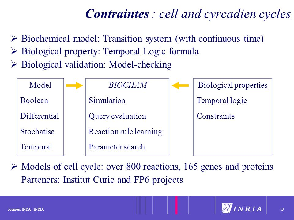 Journées INRA - INRIA13 Contraintes : cell and cyrcadien cycles Biochemical model: Transition system (with continuous time) Biological property: Tempo