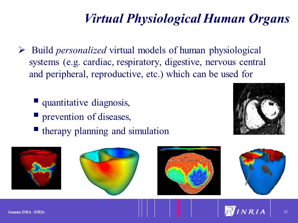 Journées INRA - INRIA17 Virtual Physiological Human Organs Build personalized virtual models of human physiological systems (e.g. cardiac, respiratory