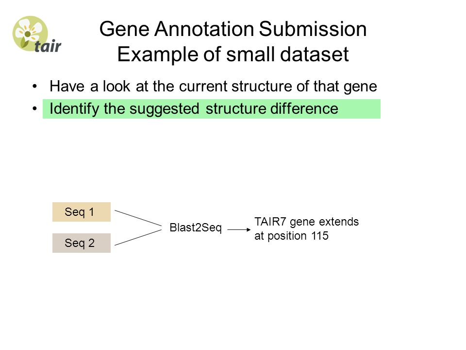 Have a look at the current structure of that gene Identify the suggested structure difference Gene Annotation Submission Example of small dataset Seq