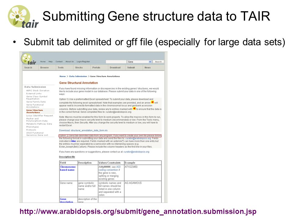 Submitting Gene structure data to TAIR Submit tab delimited or gff file (especially for large data sets) http://www.arabidopsis.org/submit/gene_annota