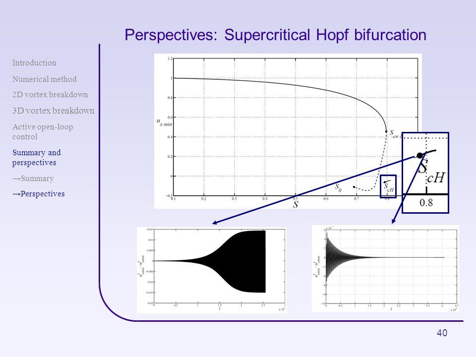 40 Perspectives: Supercritical Hopf bifurcation Introduction Numerical method 2D vortex breakdown 3D vortex breakdown Active open-loop control Summary