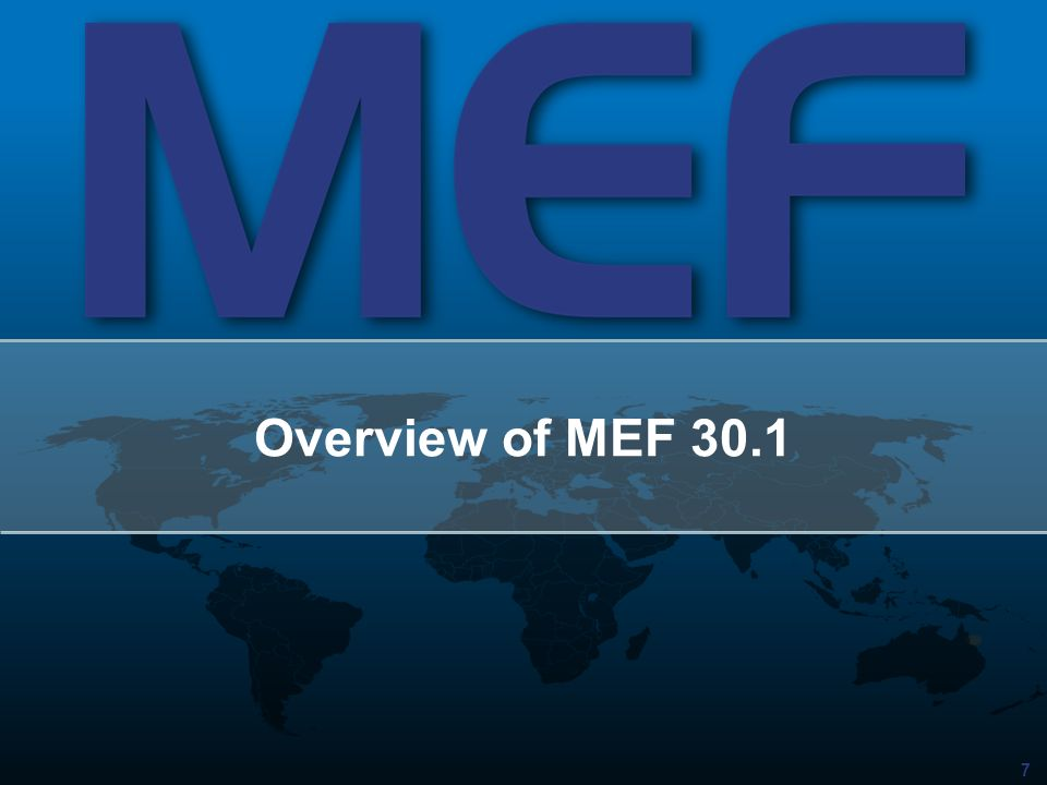 7 Overview of MEF 30.1