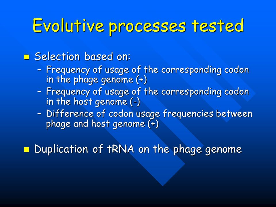 Evolutive processes tested Selection based on: Selection based on: –Frequency of usage of the corresponding codon in the phage genome (+) –Frequency of usage of the corresponding codon in the host genome (-) –Difference of codon usage frequencies between phage and host genome (+) Duplication of tRNA on the phage genome Duplication of tRNA on the phage genome