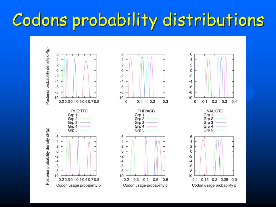 Codons probability distributions