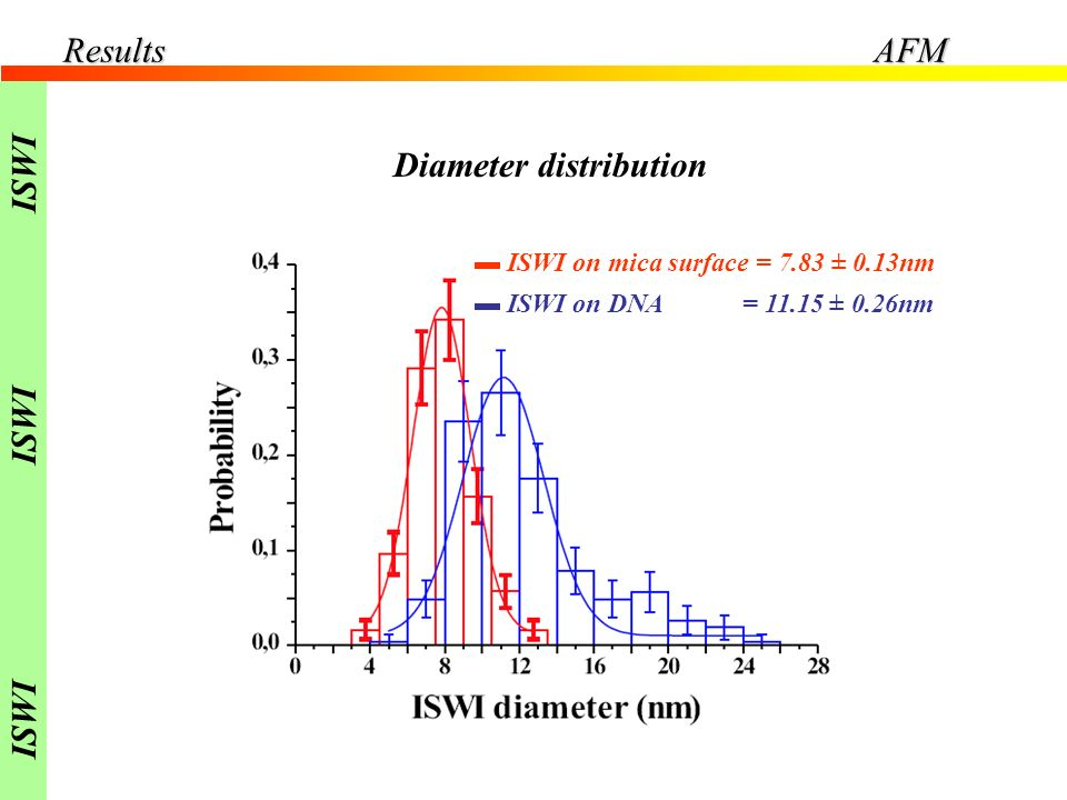 ISWI on mica surface = 7.83 ± 0.13nm ISWI on DNA = 11.15 ± 0.26nm Diameter distribution ResultsAFM ISWI