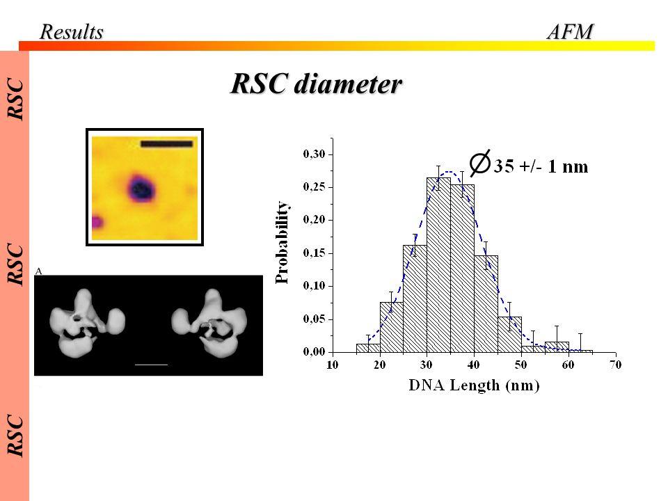 ResultsAFM RSC diameter RSC