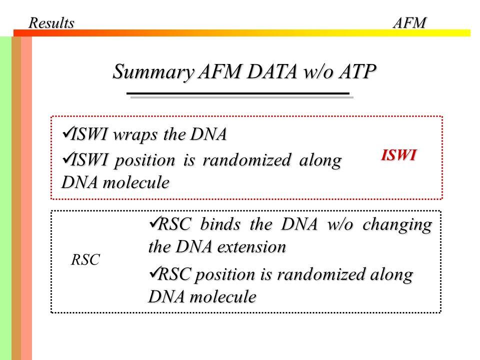 ResultsAFM Summary AFM DATA w/o ATP ISWI wraps the DNA ISWI wraps the DNA ISWI position is randomized along DNA molecule ISWI position is randomized a