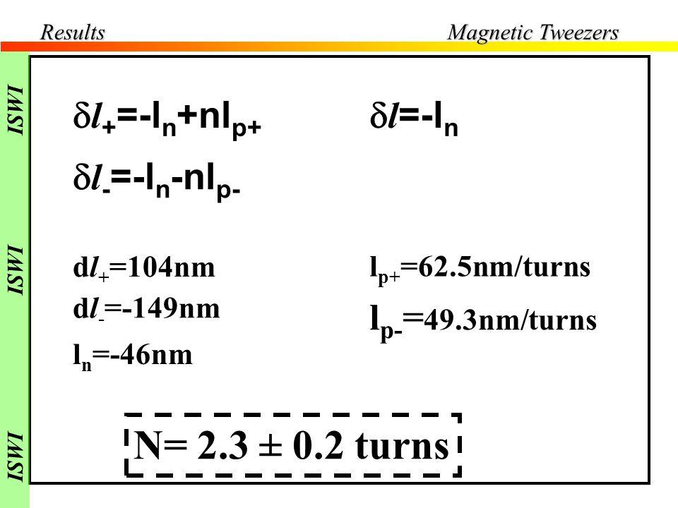 Results l nicked = -46nm l negative -149nm l positive 104nm Positive Supercoiling l + Nicked DNA l - Negative Supercoiling nl p lnln lnln l l + =-l n