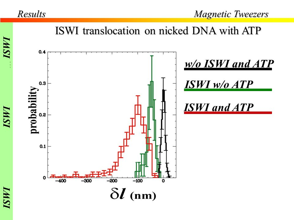 Results Force =0.4pN ISWI translocation on nicked DNA with ATP w/o ISWI and ATP ISWI w/o ATP ISWI and ATP Magnetic Tweezers ISWI