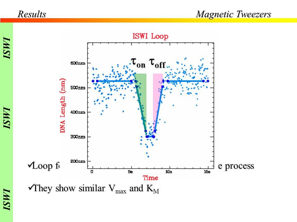 Results Loop formation and loop deformation are active process Loop formation and loop deformation are active process They show similar V max and K M